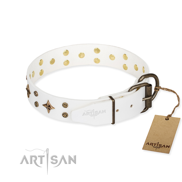 Stylish walking leather collar with adornments for your pet