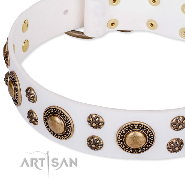 Leather dog collar with extraordinary decorations