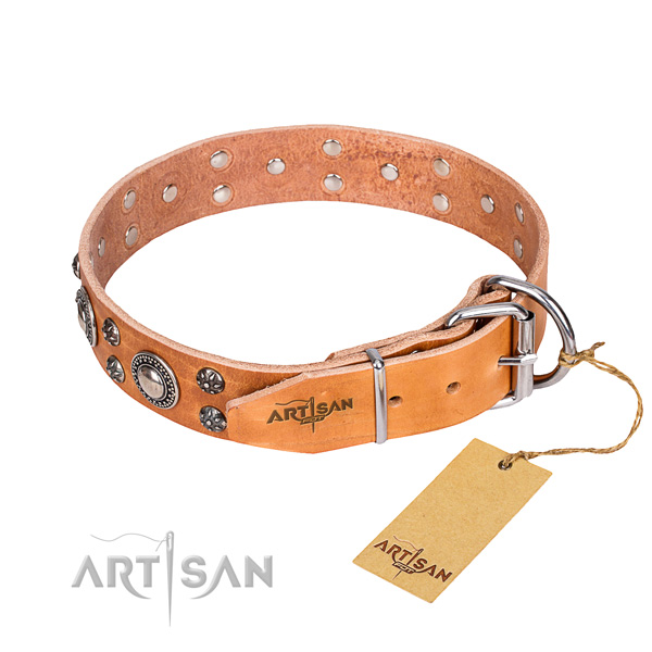Everyday use full grain genuine leather collar with embellishments for your dog