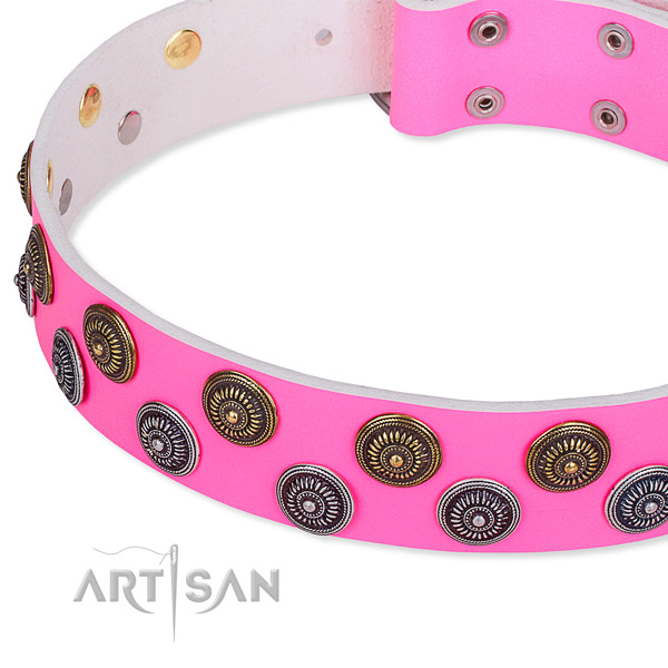 Full grain leather dog collar with awesome embellishments