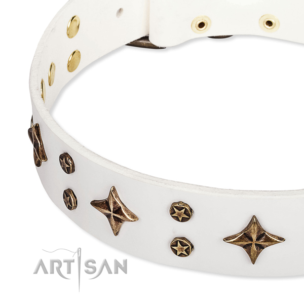 Full grain genuine leather dog collar with exquisite embellishments