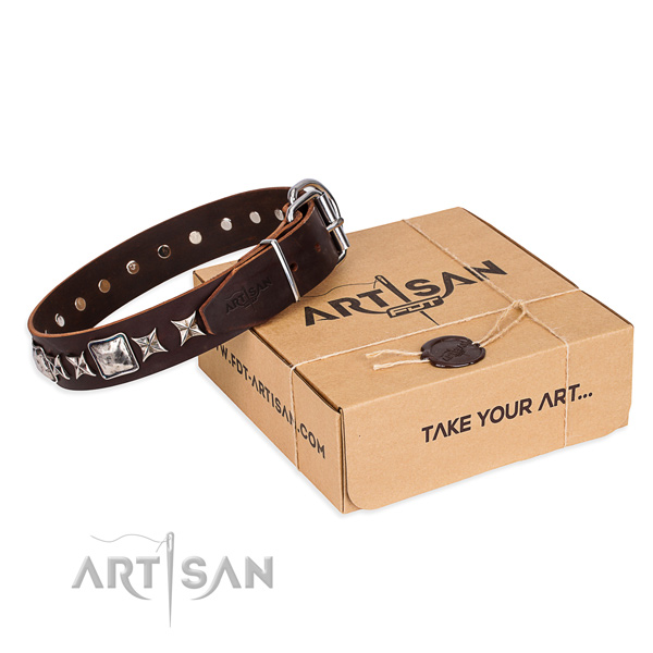 Adorned full grain natural leather dog collar for walking