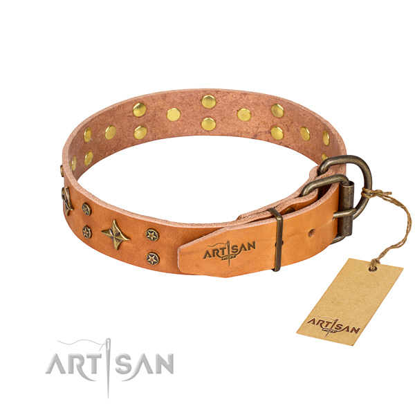Everyday walking natural genuine leather collar with embellishments for your dog