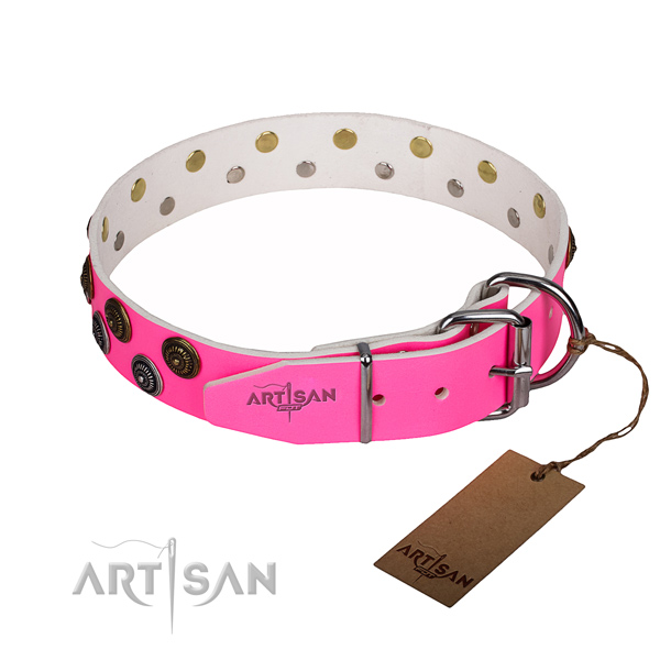 Everyday walking full grain genuine leather collar with decorations for your dog