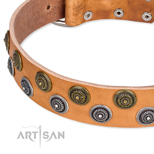 Genuine leather dog collar with top notch studs