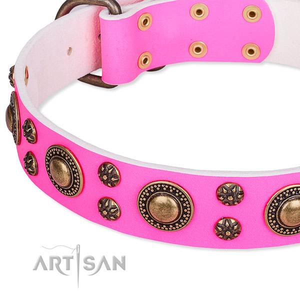 Natural genuine leather dog collar with fashionable embellishments