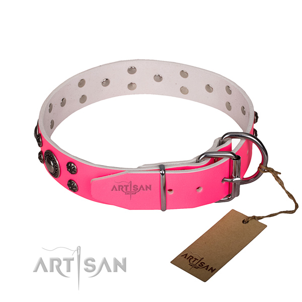 Daily use full grain leather collar with rust-proof buckle and D-ring