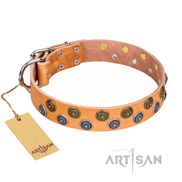 Handy use genuine leather collar with embellishments for your doggie
