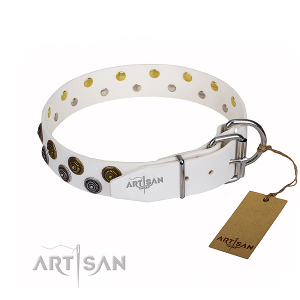 Daily use full grain natural leather collar with adornments for your pet