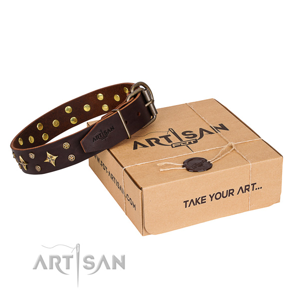 Adorned full grain genuine leather dog collar for walking