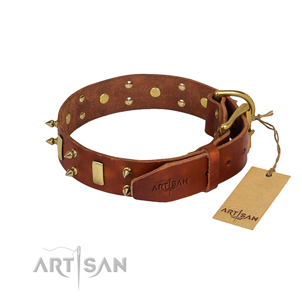 Sturdy leather dog collar with rust-proof details