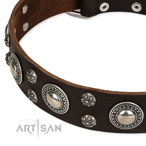 Snugly fitted leather dog collar with resistant to tear and wear rust-proof buckle and D-ring