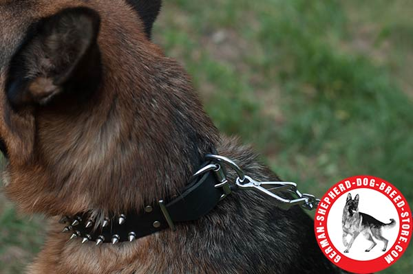 Spiked German Shepherd Collar with Nickel-plated Hardware
