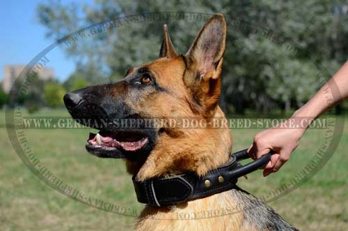 Handmade German Shepherd Dog Collar