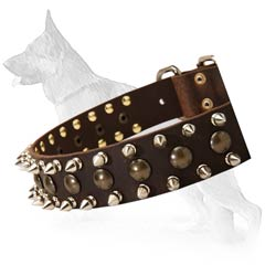 Beautiful German Shepherd Dog Collar