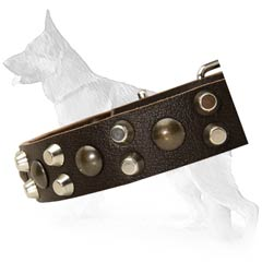 High Quality German Shepherd Dog Collar