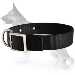 Any Weather German Shepherd Dog Collar