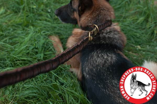 Efficient Braided Leather Choke Collar for German Shepherd