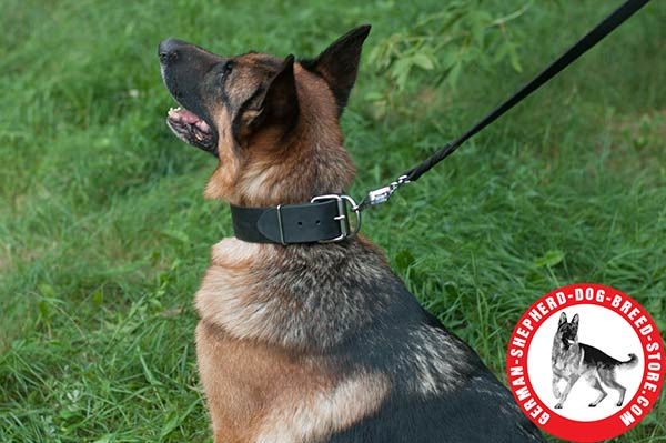 Wide German Shepherd Collar with Rust-proof Buckle