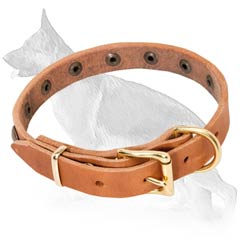 Leather German Shepherd Collar with Special Brass Buckle
