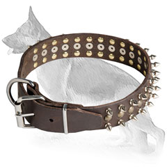 Buckle Spiked Leather German Shepherd Collar with Nickel Plated Hardware