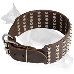 Buckled Wide Leather German Shepherd Collar Studded in 5 Rows