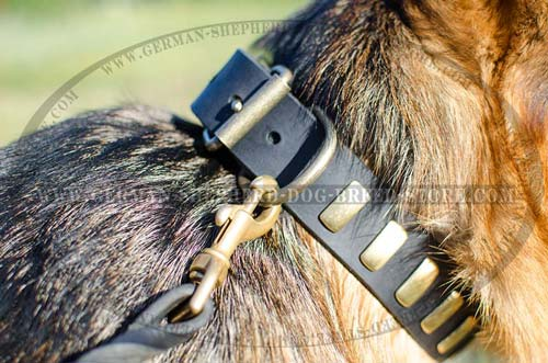 Leather German Shepherd Collar with Slide Brass Plates Riveted