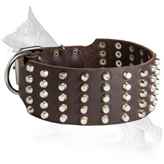 Extra Wide Leather German Shepherd Collar with Nickel Pyramids