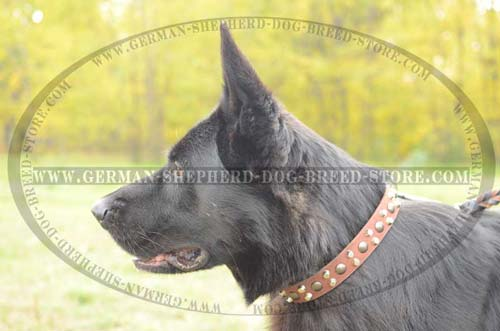 German Shepherd Collar Leather For Easy Walking