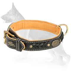 Braided Leather German Shepherd Collar with Decorative Oval Plate