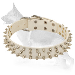 White German Shepherd Collar for Walking