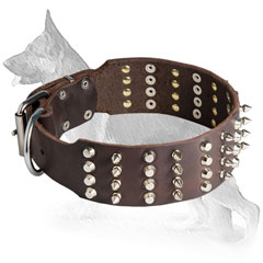 Wide Leather German Shepherd Collar with 4 Rows Nickel Plated Spikes and Pyramids