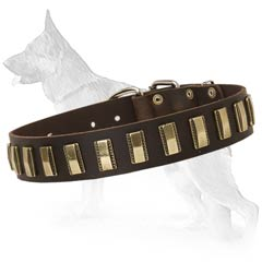 Unusual Design Leather German Shepherd Collar with Brass Plates