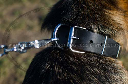 Leather German Shepherd Collar with Nickel Plated Pyramids and Plates