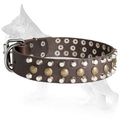 Leather German Shepherd Collar Decorated with Brass Half-Ball Studs and Nickel Plated Pyramids