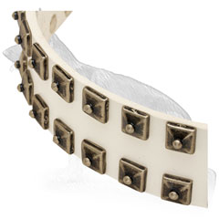 White German Shepherd Collar Strap with 2 Rows Square Studs