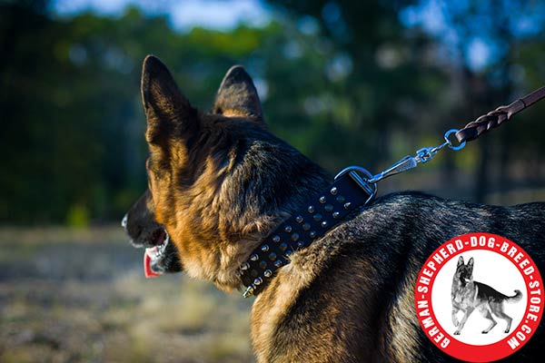 Decorated Leather German Shepherd Collar for Comfortable Walking