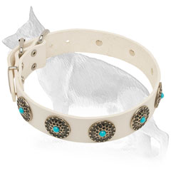 White Leather German Shepherd Collar with Circles and Blue Stones