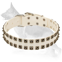 White Leather German Shepherd Collar Decorated with Studs