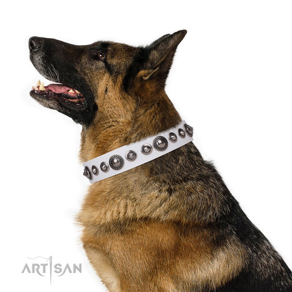 Designer studded leather dog collar for basic training