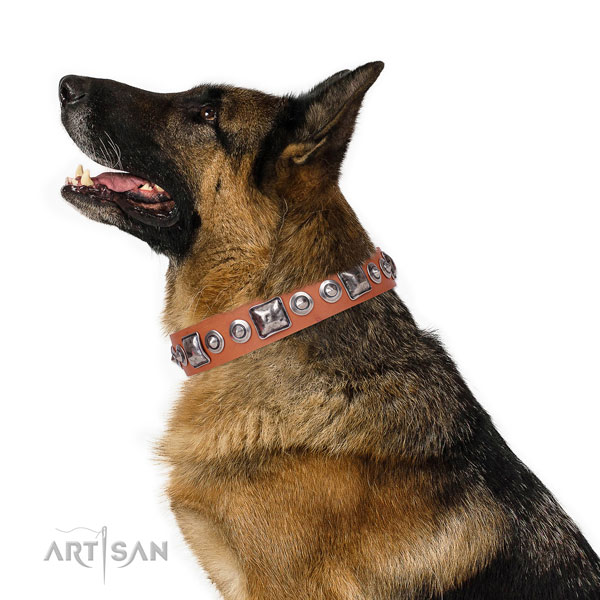 Inimitable embellished natural leather dog collar for daily walking