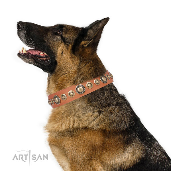 Rust-proof buckle and D-ring on full grain leather dog collar for walking in style