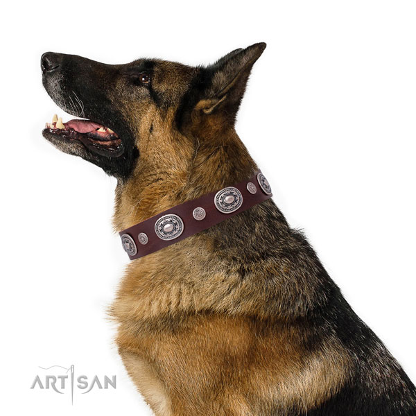 Durable buckle and D-ring on genuine leather dog collar for daily use
