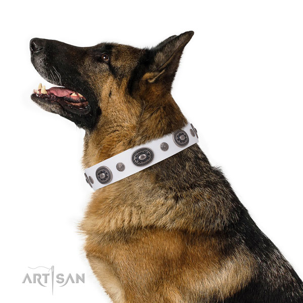 Full grain leather dog collar with rust-proof buckle and D-ring for everyday use