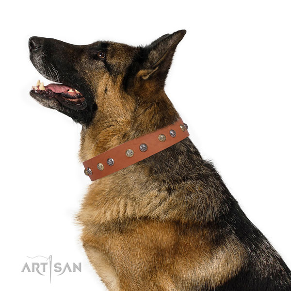 Genuine leather dog collar with rust resistant buckle and D-ring for everyday use