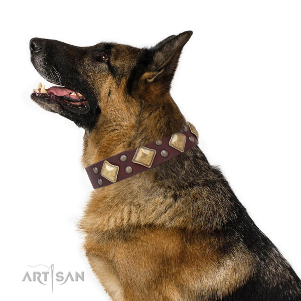 Handy use embellished dog collar made of best quality leather