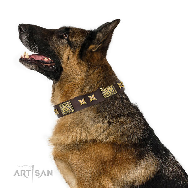 Handy use dog collar with exquisite studs