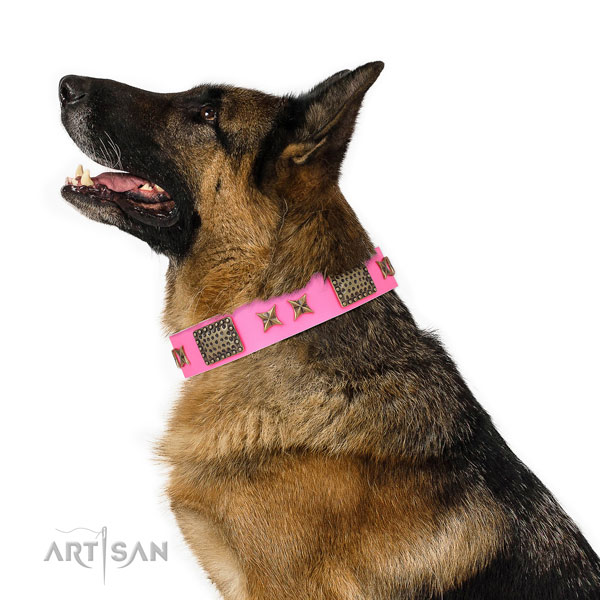 Extraordinary decorations on daily walking full grain leather dog collar