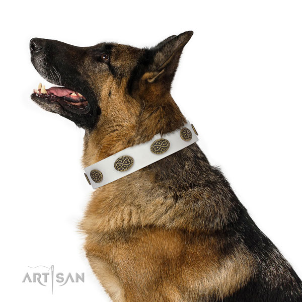 Inimitable studs on walking genuine leather dog collar