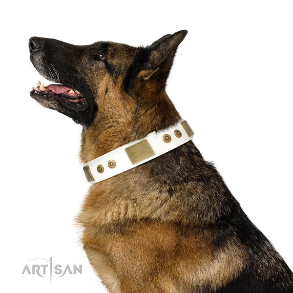 Durable everyday use dog collar of genuine leather